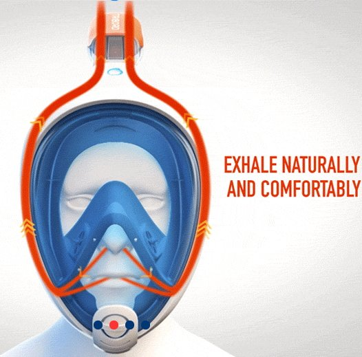 cc2edd6a7 Tribord Easybreath Full Face Snorkel Compared To Seaview 180 Mask